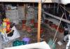 Laboratorio produzione canapa