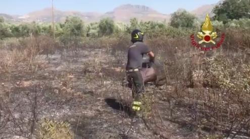 incendio Monreale sicilia